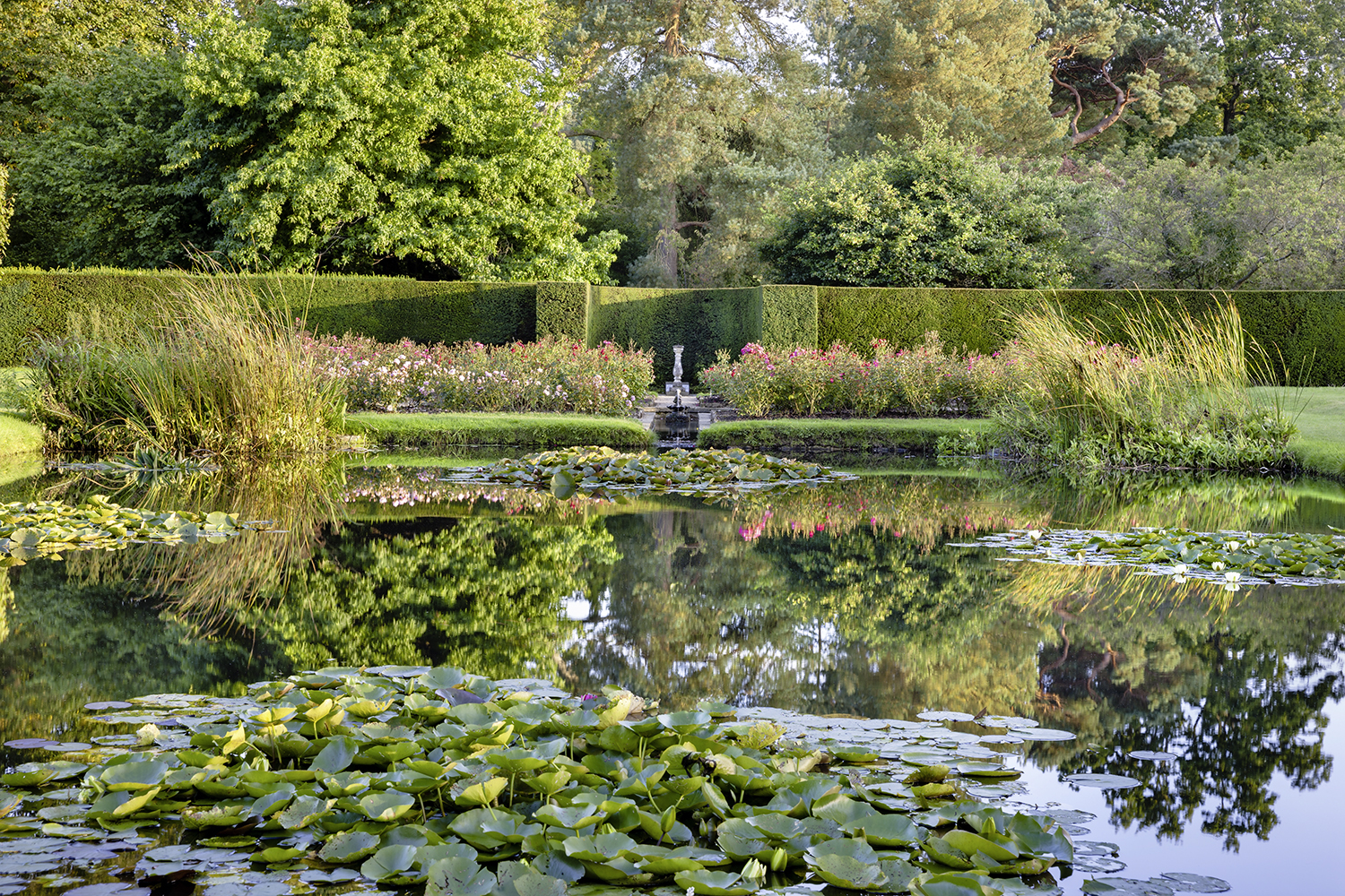 The lily pond at Bateman's c. NTPL/ANDREW BUTLER