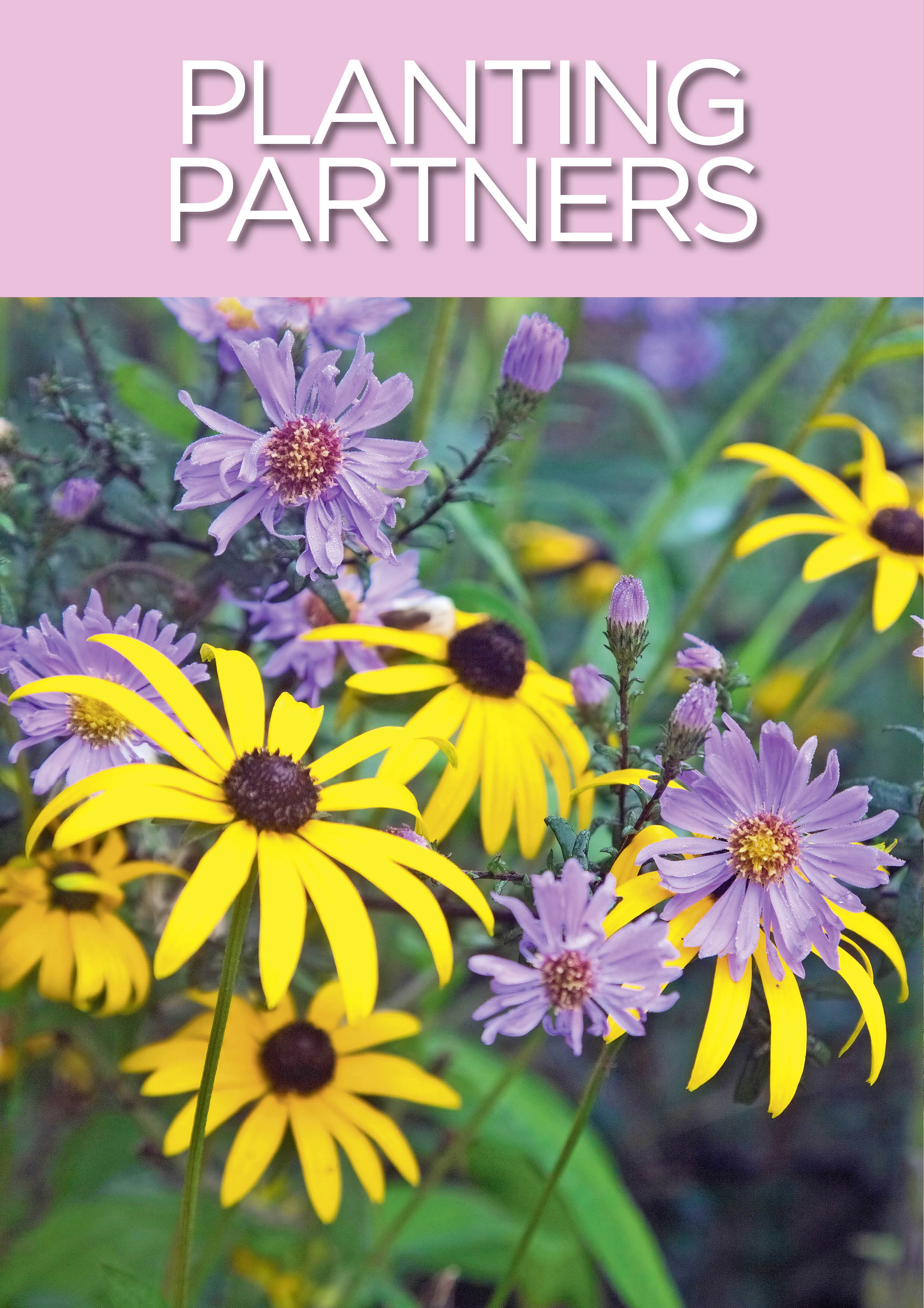 Planting Partners