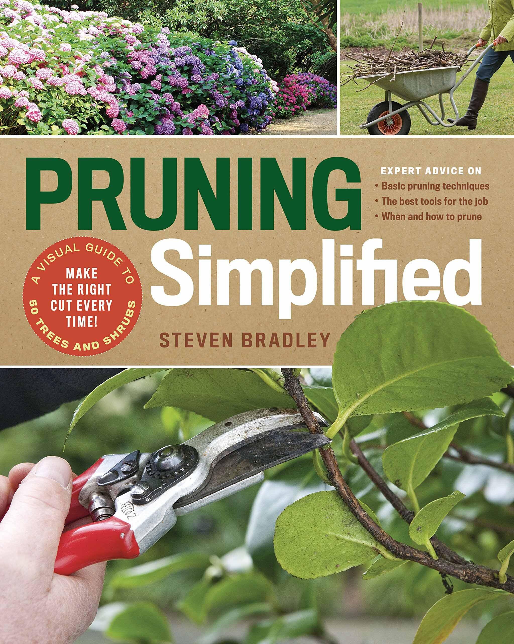 pruning_simplified.jpg