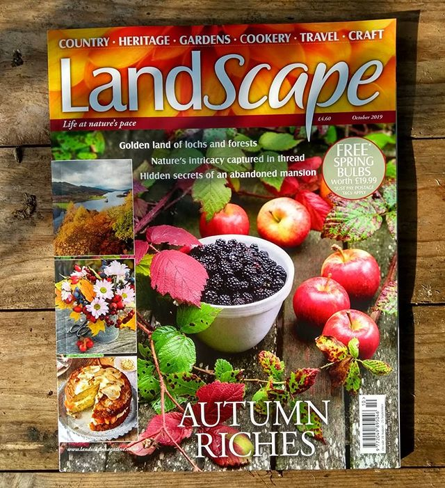 """""""The summer-flower has run to seed, And yellow is the woodland bough; And every leaf of Bush and weed, Is tipt with autumn's pencil now.  Autumn by John Clare  #autumn #newissue #countryside #magazine  #landscapemag #landscapemagazine #autumn #blackberry #hedgerow #apples #baking #nature #gardening #history #heritage #craft #johnclare"""
