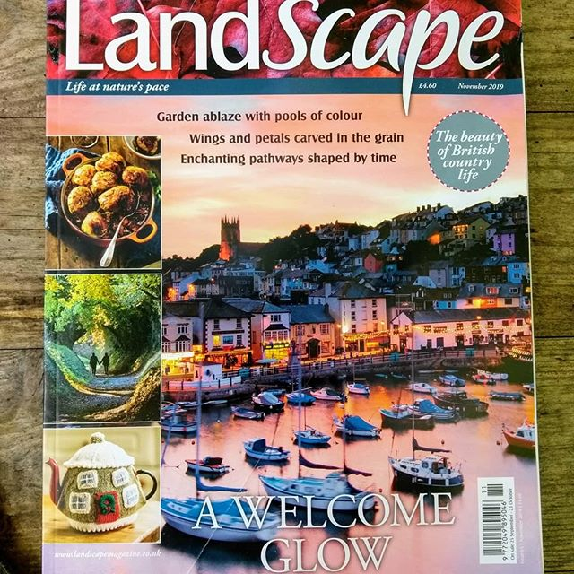 All the riches of Autumn are celebrated in the current issue of Landscape. Richly fruited baking and a garden of fiery trees. A walk through a tunnel of trees and intricate jewels carved from fallen branches. Knit an enchanting country cottage tea cosy and enjoy the vibrant streets of Totnes and Brixham... #landscapemag #landscapemagazine #magazine #nextissue#countryside #cookery #craft #gardening #travel #walk #history #heritage