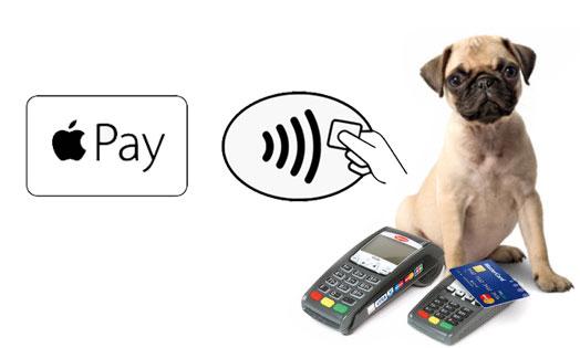 woofs-a-daisy-payment-methods.jpg