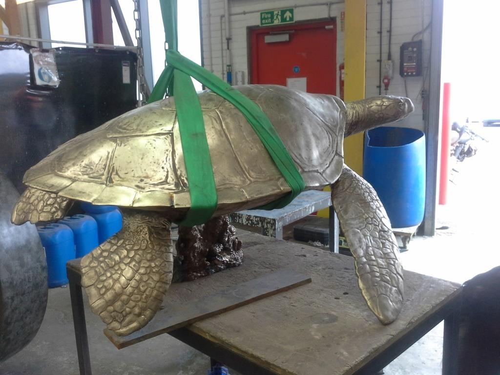 Hawksbill bronze in sling.jpg
