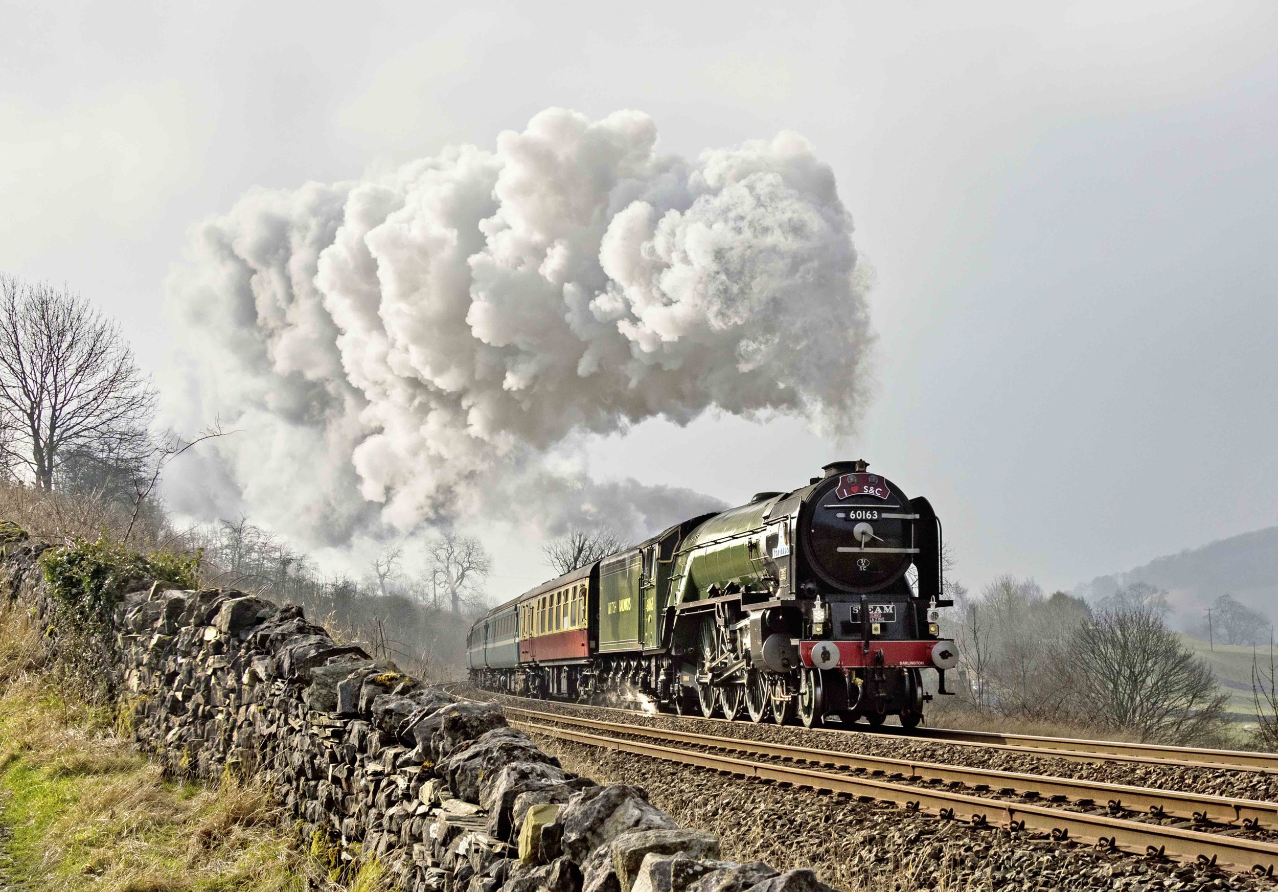 Not 'hard-core' steam but certainly 'real' steam - 'A1' No. 60163  Tornado  marches past Langcliffe with the 10.44 Skipton-Appleby 'Plandampf' Northern service on February 14. BOB GREEN