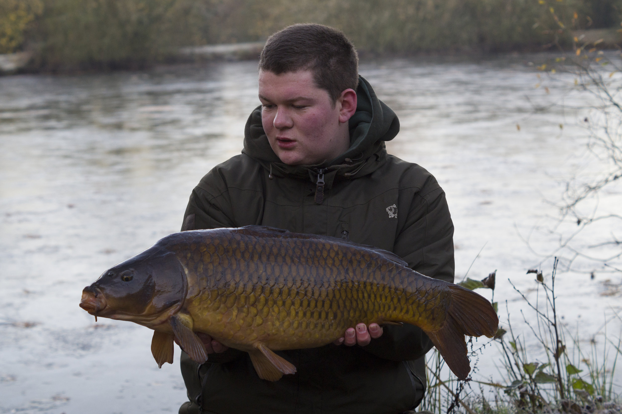 This common came as the lake froze