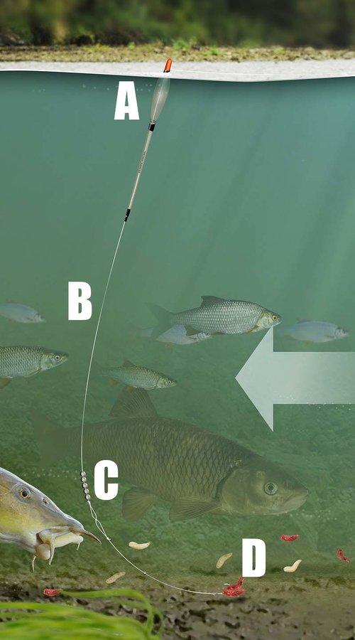 Gardner Tackle Target Mini Tail Rubbers Carp Tench Barbel Bream Coarse Fishing
