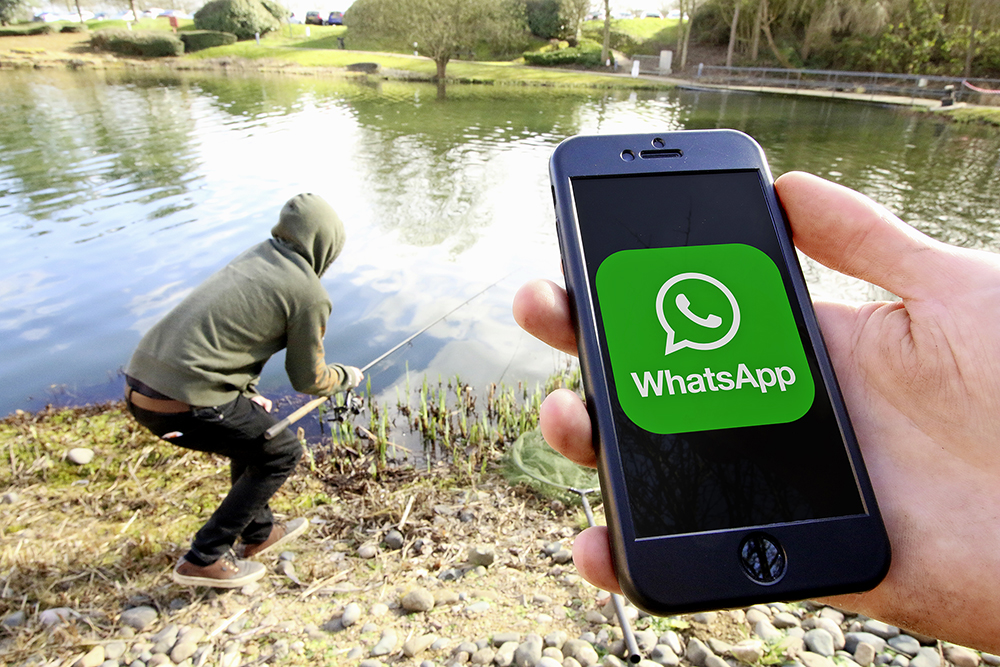 WhatsApp Poacher image.jpg