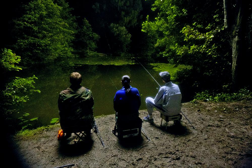 Pond Life - Still 12.jpg