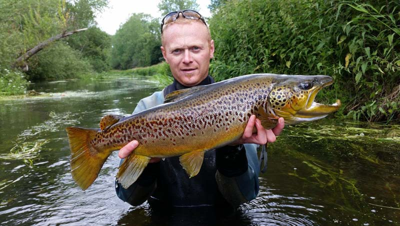 Big brown trout.jpg