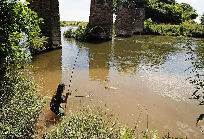 bowler river wye barbel.jpg