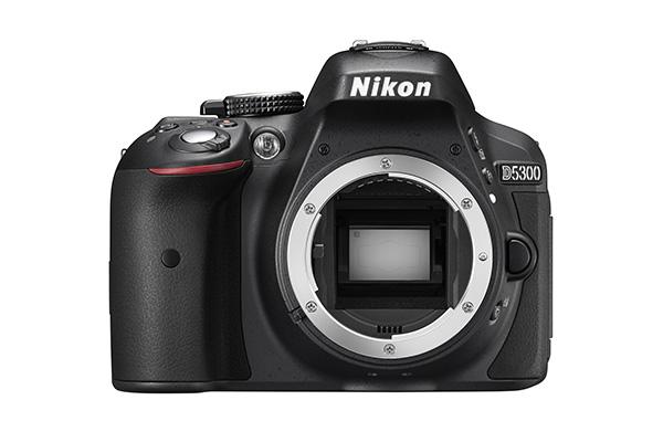 Nikon D5300 sensor.jpg