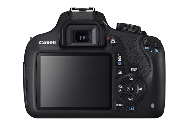 EOS 1200D (4).jpg