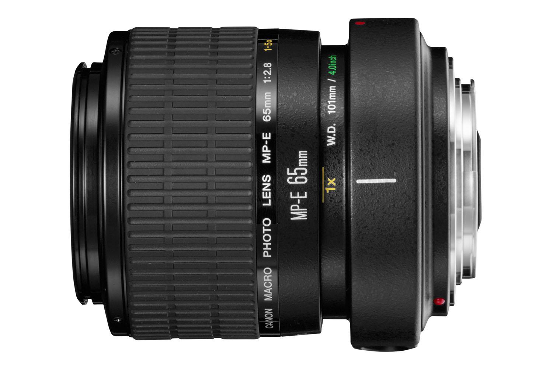 The powerful Canon MP-E 65mm f/2.8 1-5X Macro Photo