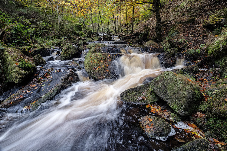 Heightened Senses - An Interview With Landscape Photographer Chris