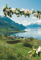 NORWAY3.jpg