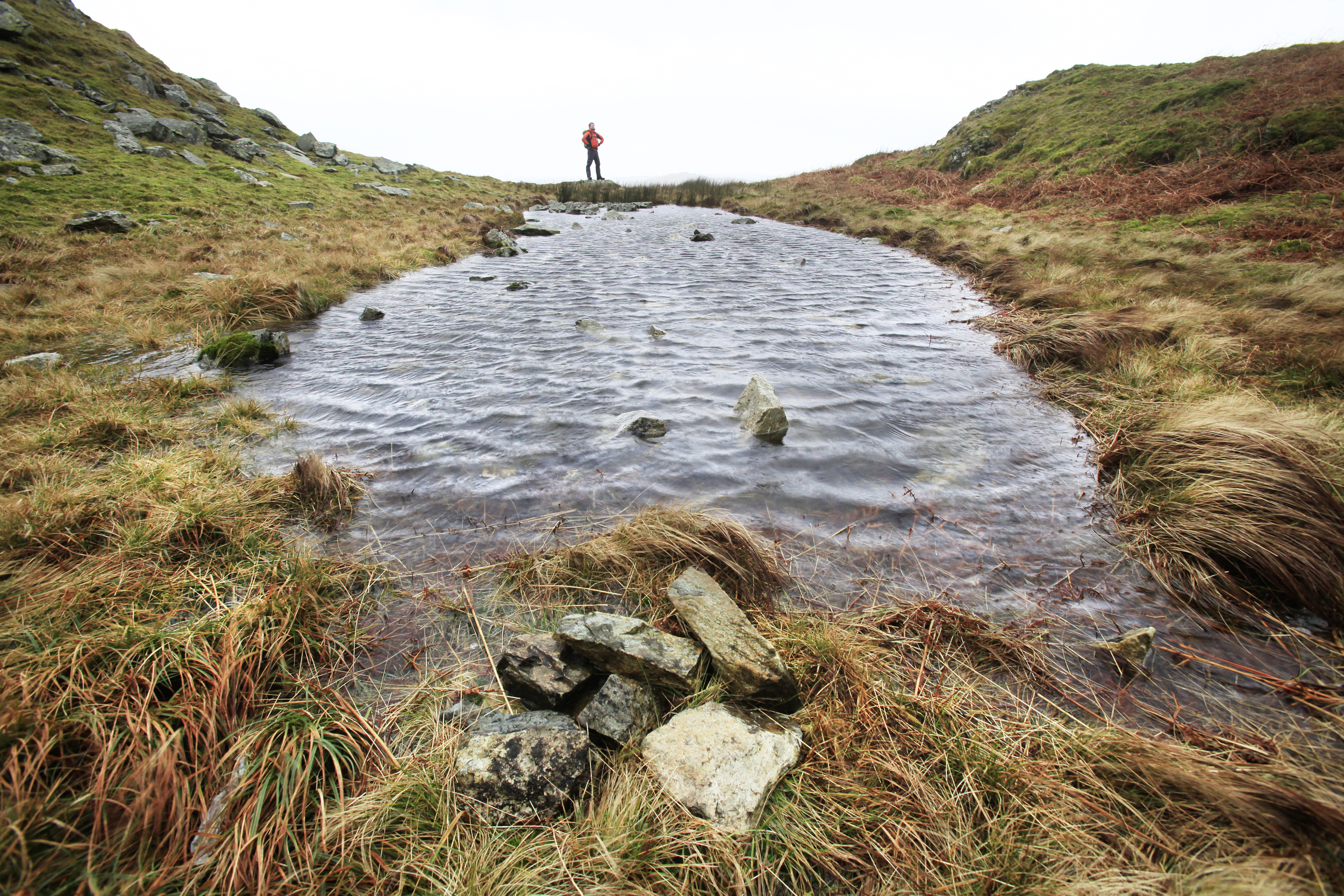 On top of Loughrigg Fell, one of many 'mini' tarns.  Photo : Tom Bailey © Trail Magazine