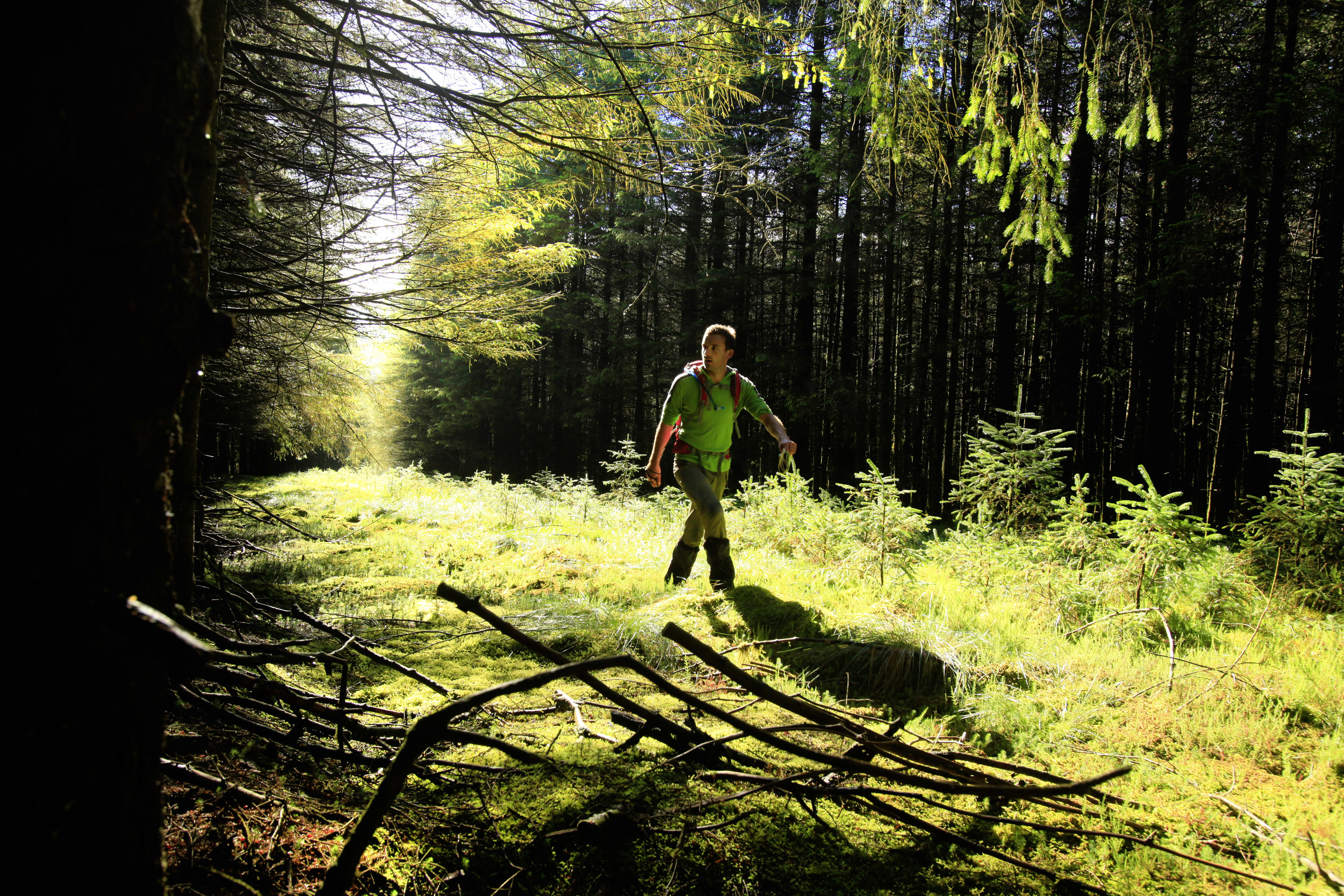 Entering the wild forests of the Northern Pennines in search of the wildest bit of all. Photo: Tom Bailey © Trail Magazine