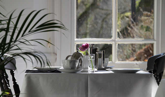 The Ferns Guesthouse Breakfast Room.jpg