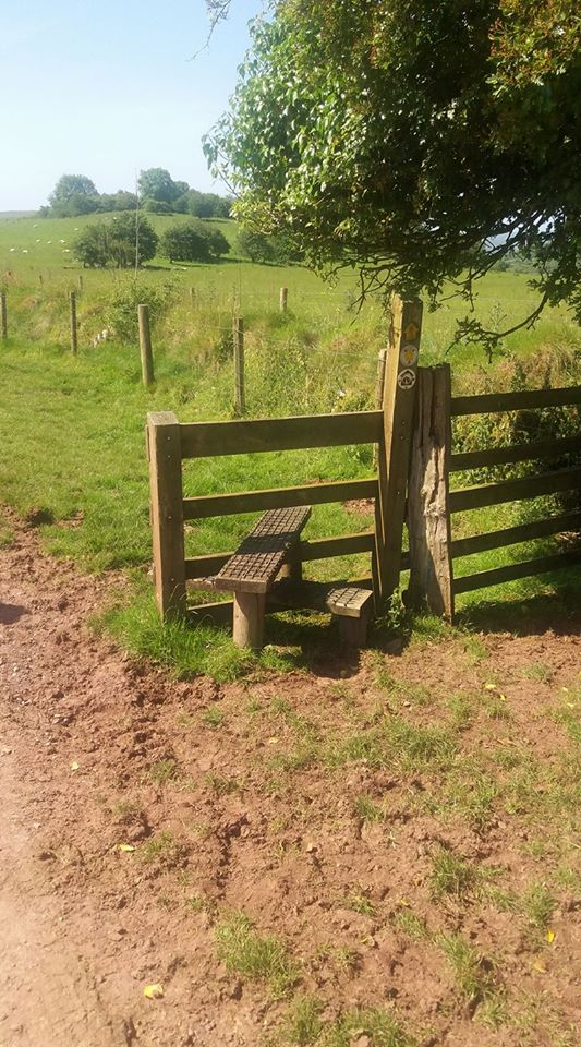 Excellent grippy surface on this redundant stile spotted by Geina Morgan‎.