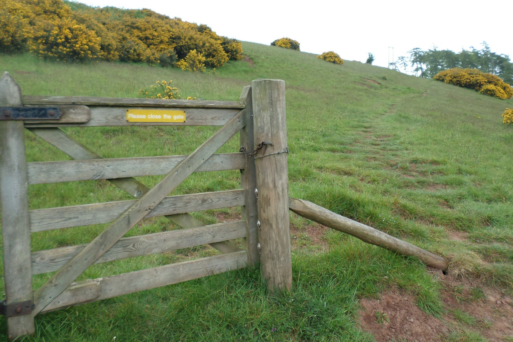 'Please close the gate' read the sign. Imagine what might happen if you didn't, wondered Gillian Nicholl.