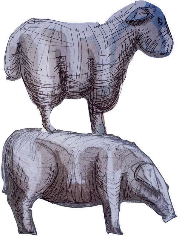 Graffham-Sheep-Pig.jpg