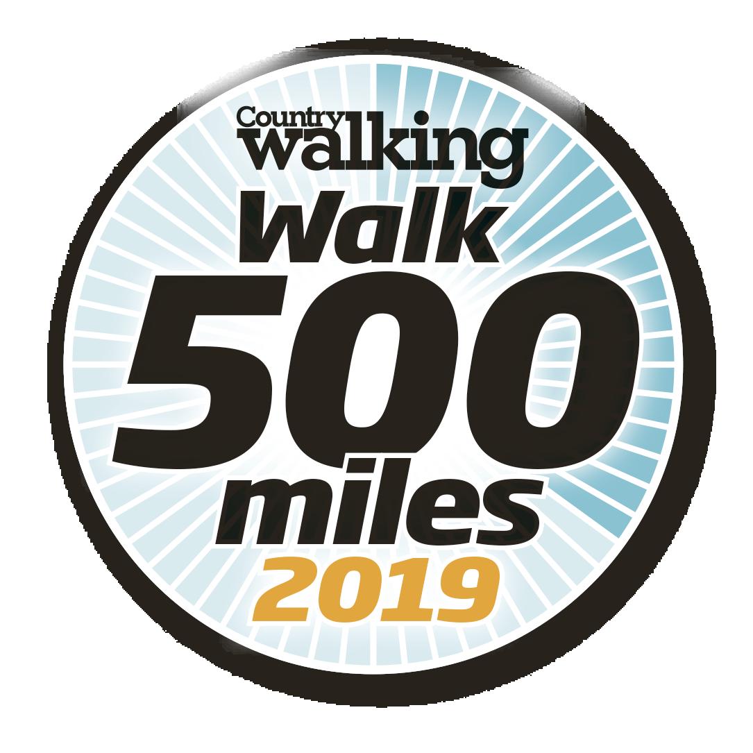 Wallk 500 miles logo 2019.png