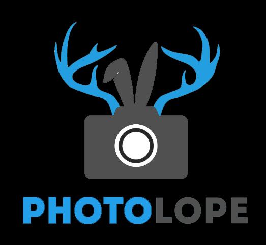 PL Logo Reversed.jpg