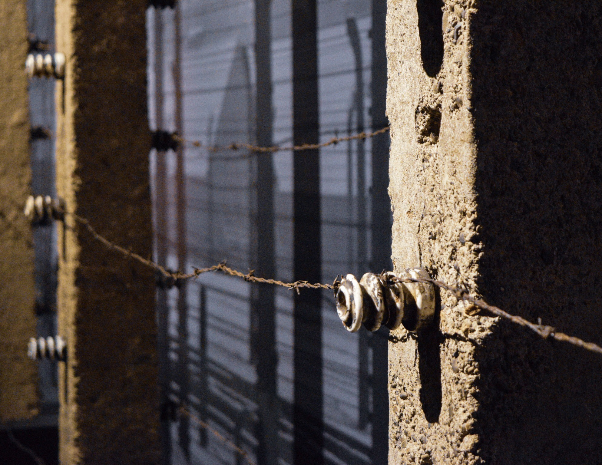 Posts and barbed wire from Auschwitz