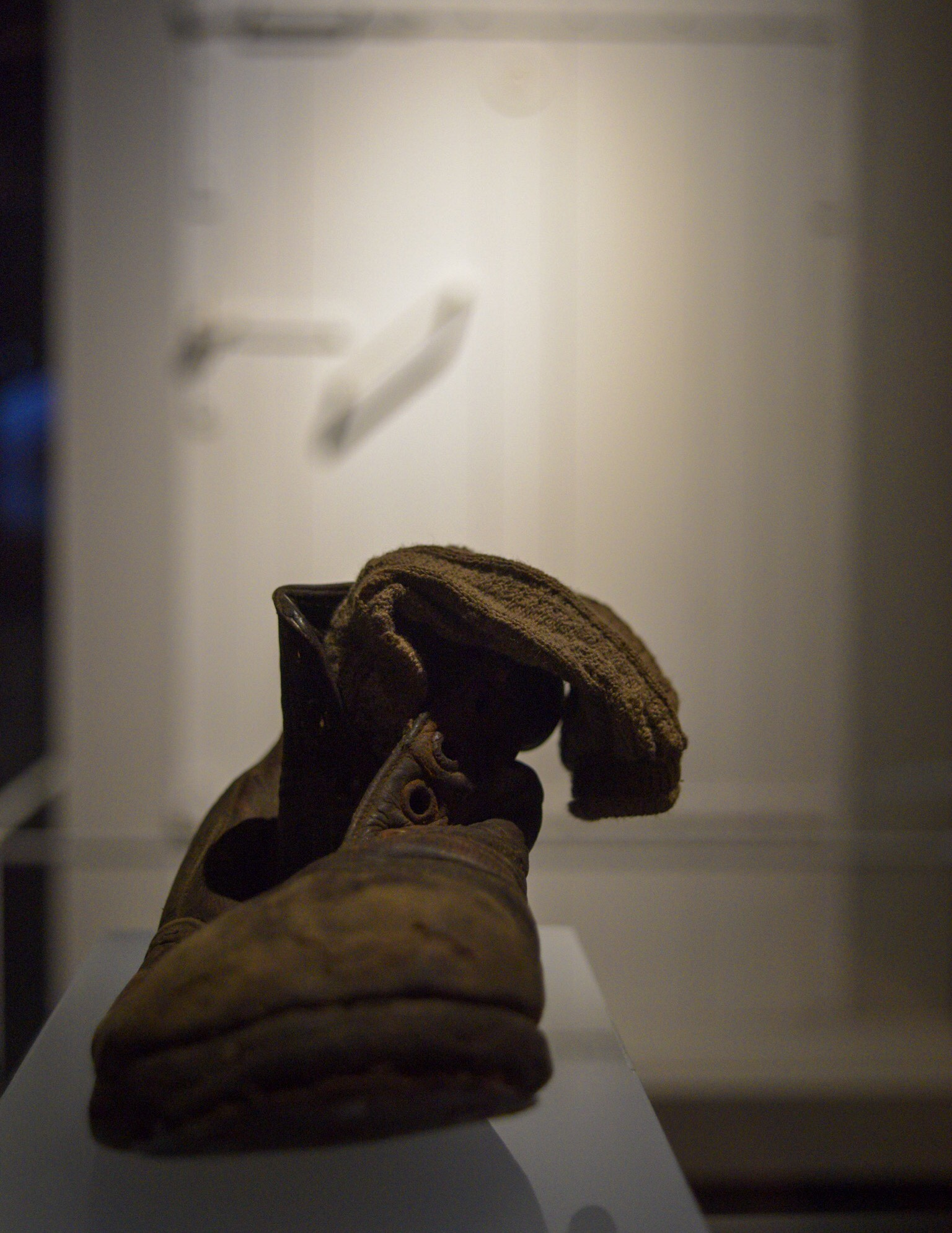 Boot found at the camp, and gas chamber door