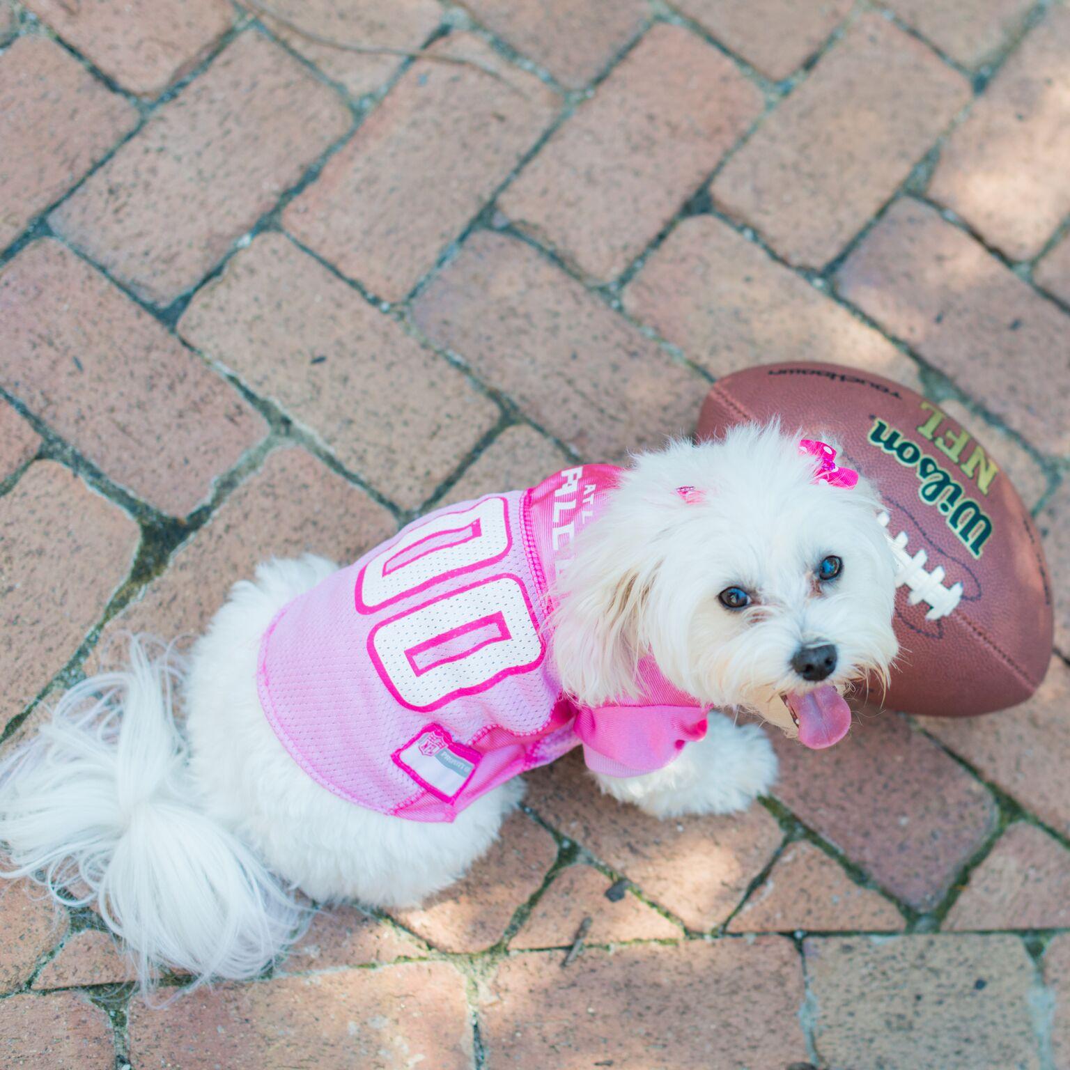 Find Stella on Instagram @downwardfacingdoggie