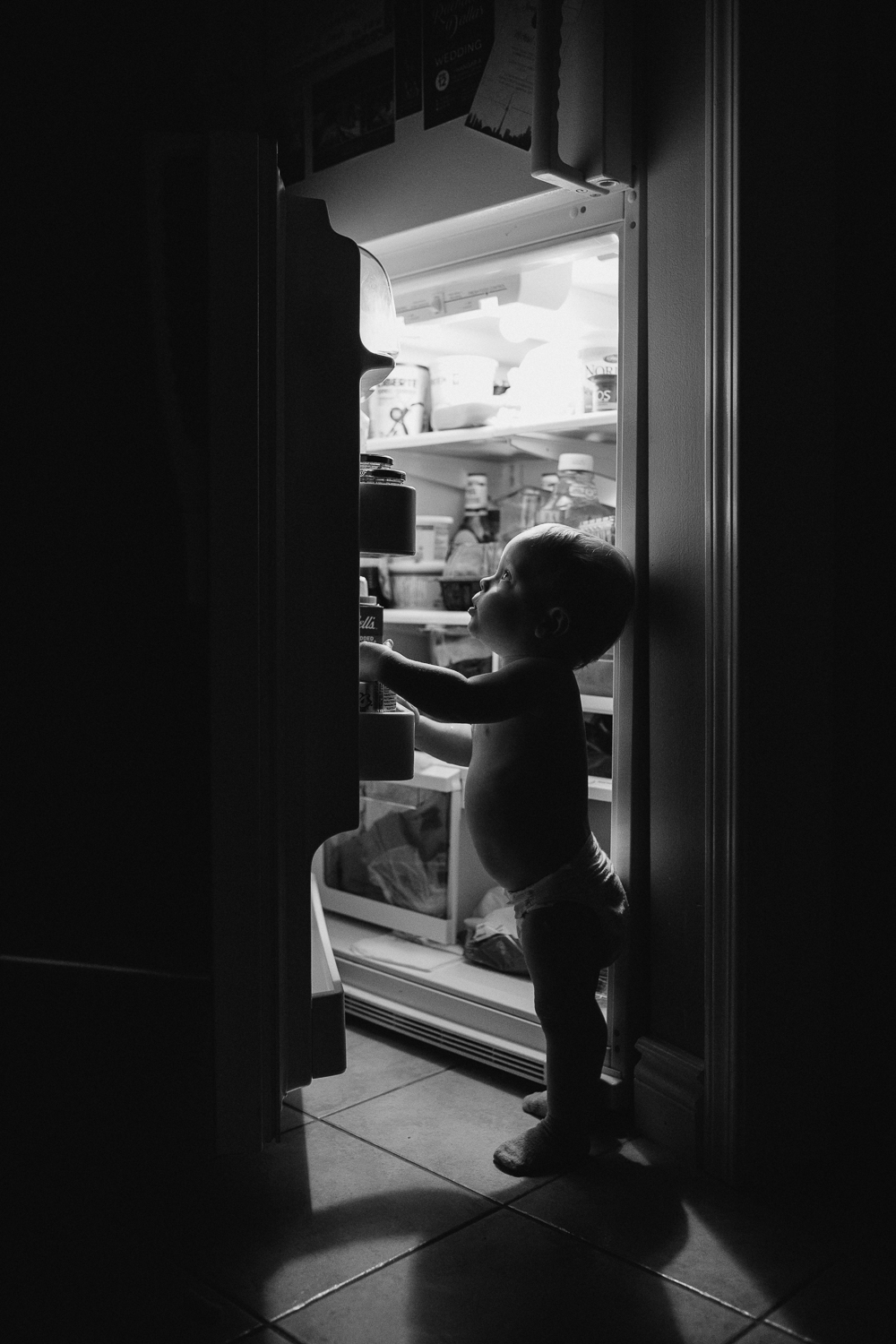 1 year old toddler boy looking into refrigerator in the dark - Markham in-home photography