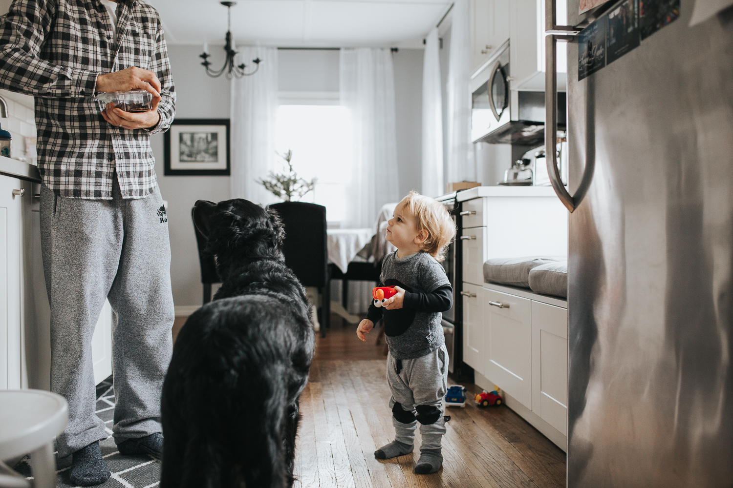 2 year old toddler boy and dog with dad in kitchen {Toronto Family Photographer}