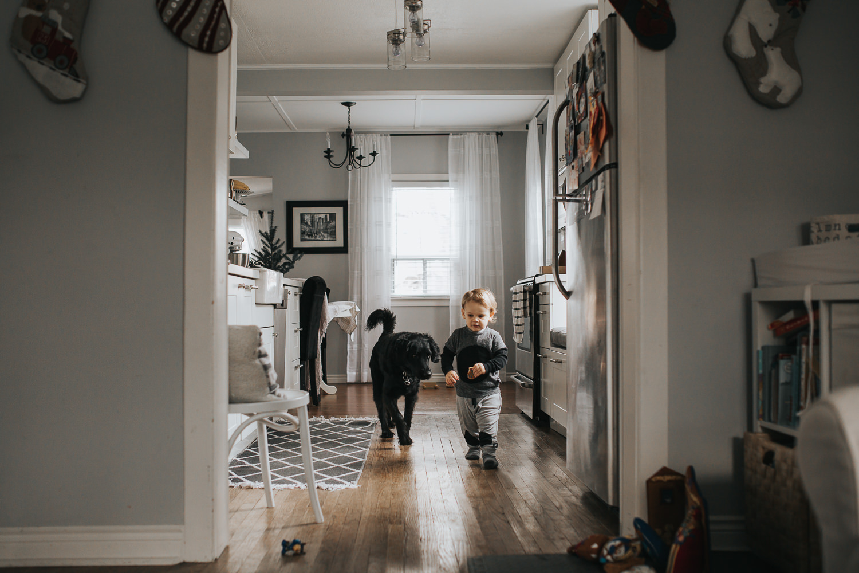 2 year old toddler boy in kitchen with black dog - Uxbridge child photography