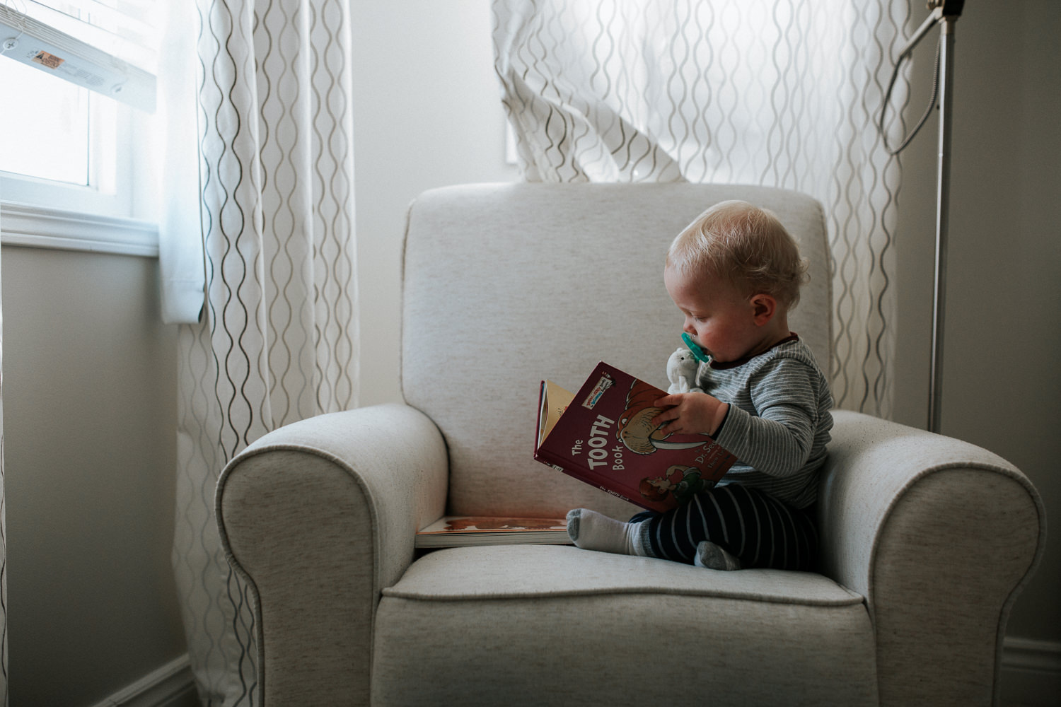 1 year old toddler boy sitting in chair reading dr suess book - stouffville child photos