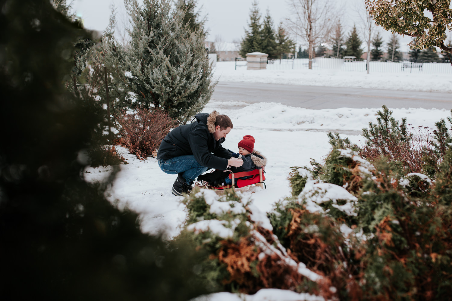 1 year old toddler boy in red wooden sled with dad - stouffville child photography