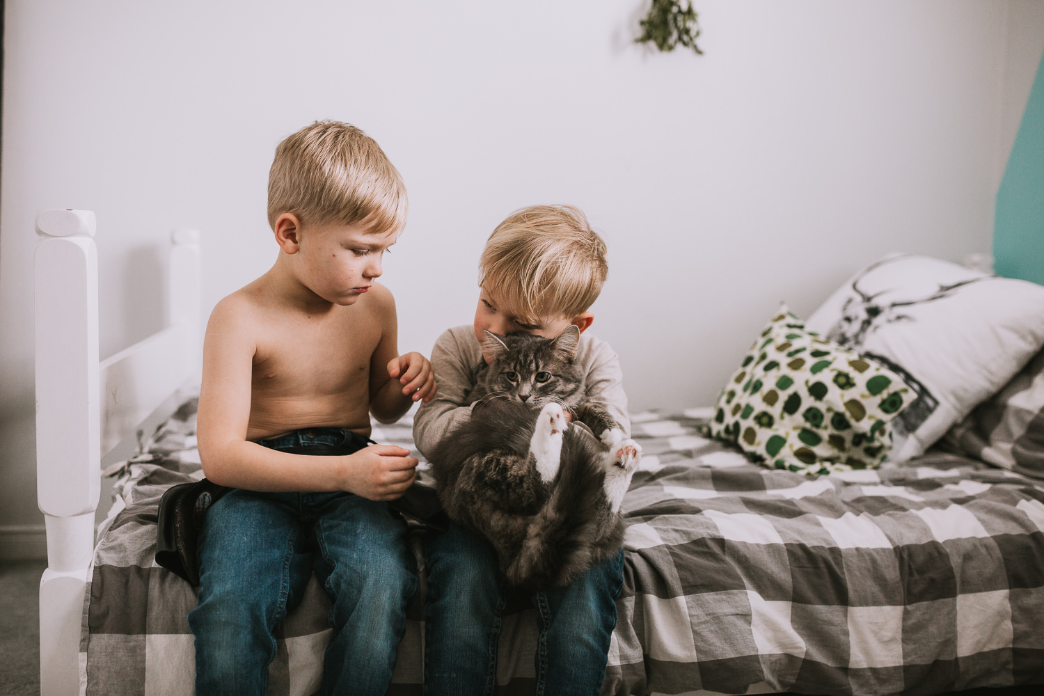 two young blonde brothers sitting on bed cuddle with pet cat - Stouffville lifestyle photos