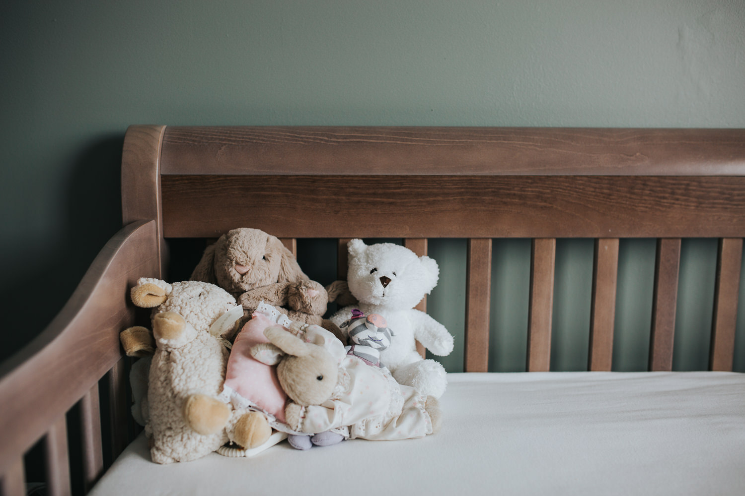 nursery details, stuffed animals in crib in green nursery - Barrie in-home photography