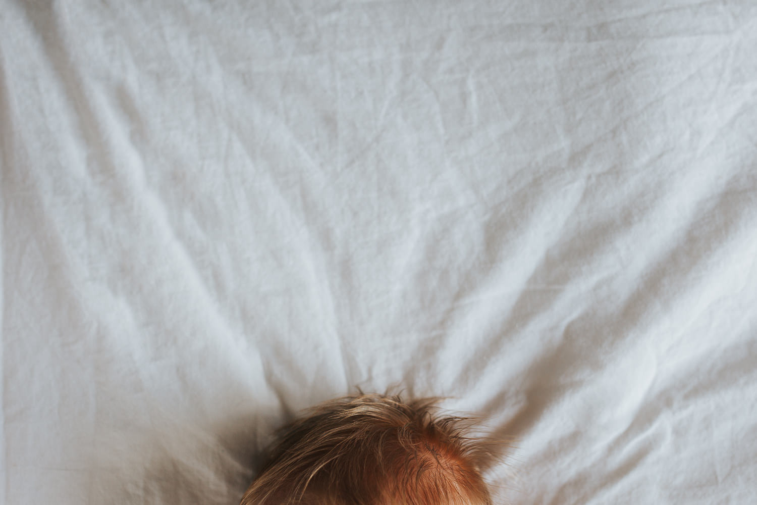 2 week old baby girl asleep on bed, close up of red hair - Stouffville In-Home Photography
