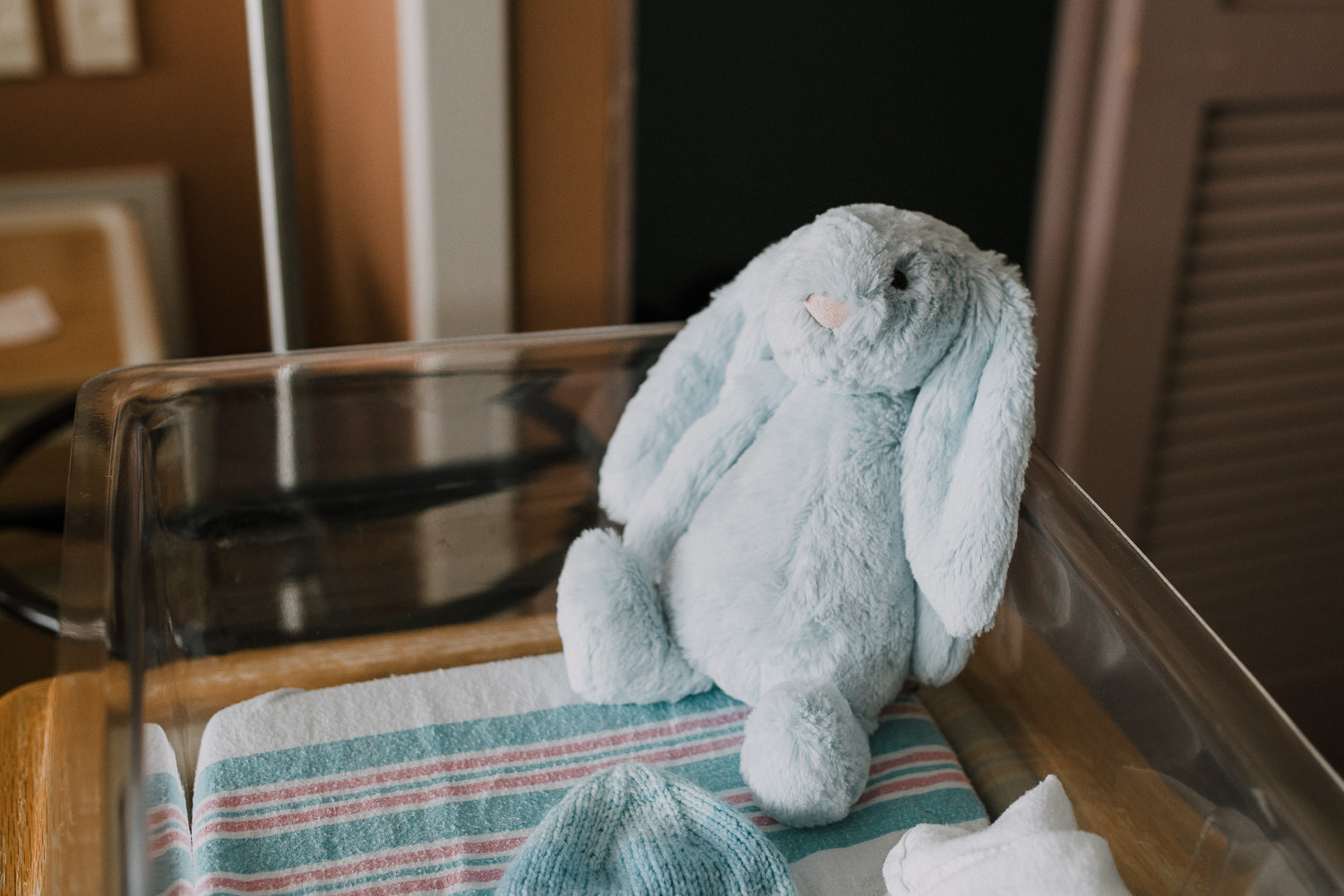 hospital room details, blue jellycat bunny in bassinet - Newmarket Fresh 48 Photos