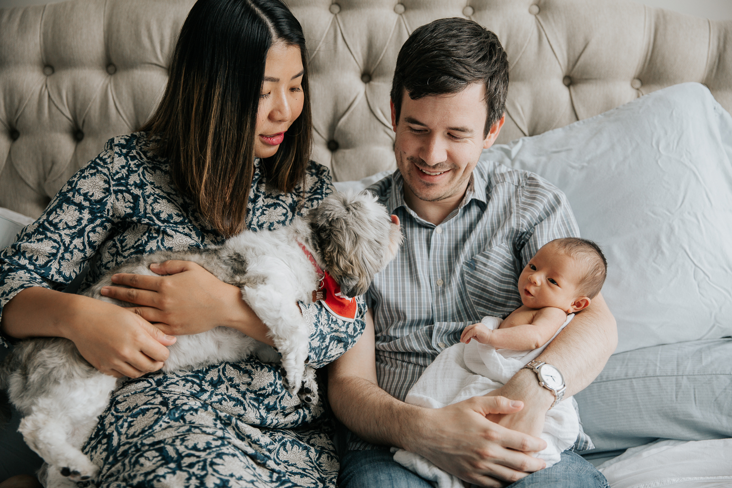 new parents sitting on master bed holding 2 week old baby girl and shitzu dog - Markham Lifestyle Photography