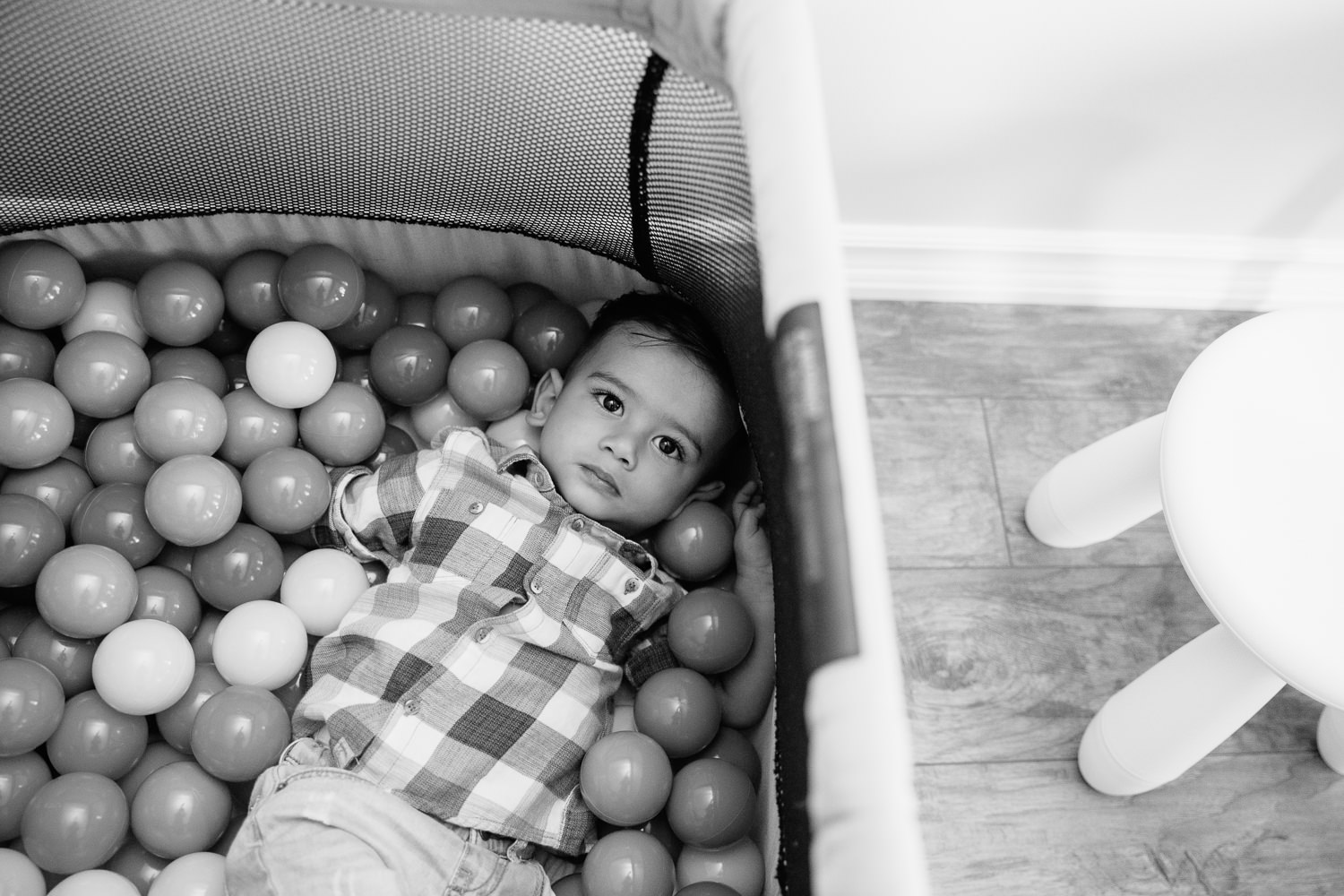 1 year old baby boy with dark hair and eyes in plaid blue and white button down shirt lying in playpen full of plastic balls looking up at camera - Newmarket In-Home Photography