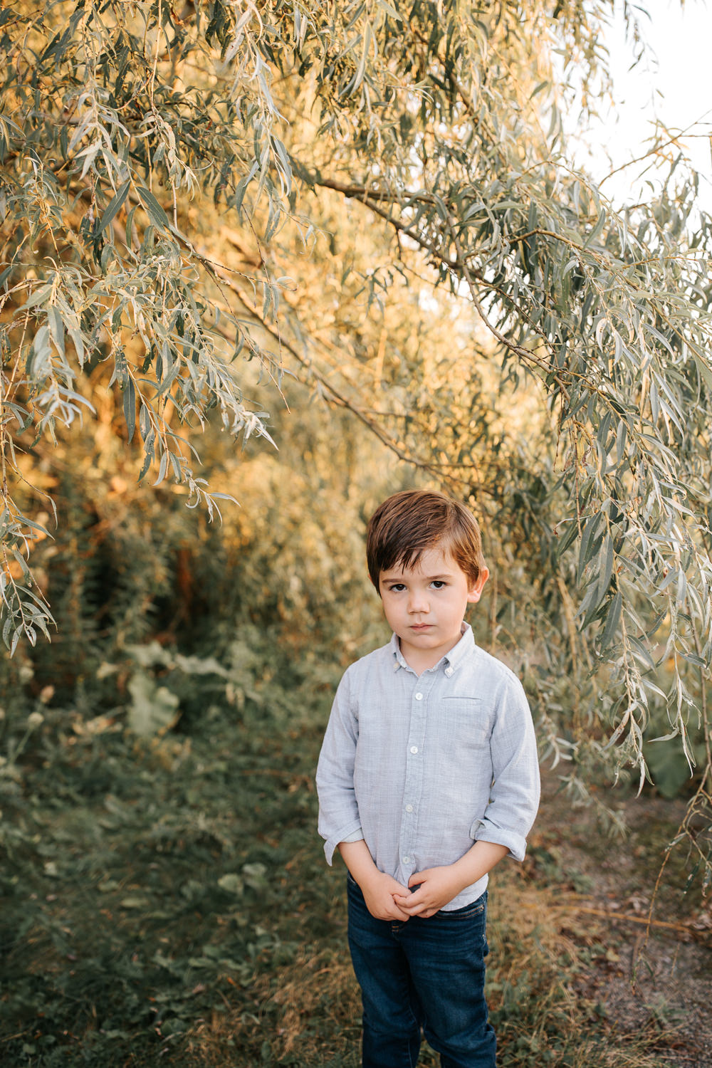 4 year old boy with dark hair and brown eyes standing under willow tree wearing blue button down shirt and jeans, hands folded in front of him looking seriously at camera -Stouffville In-Home Photography