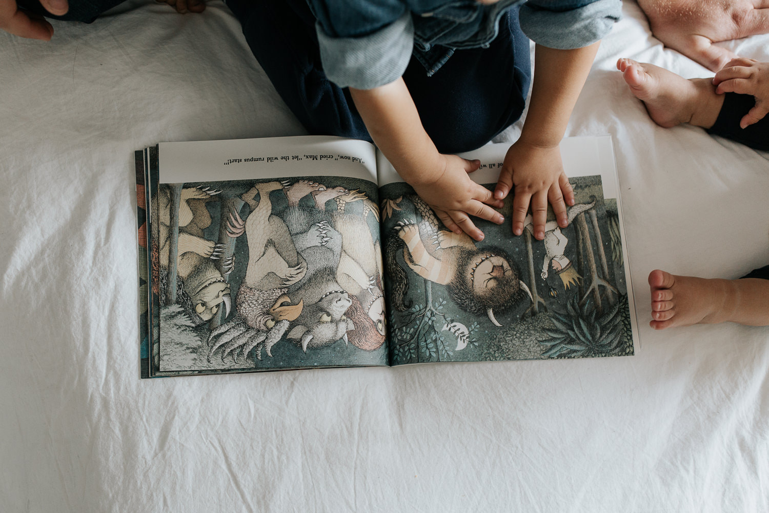 2 year old boy sitting on bed reading where the wild things are, hands reaching out to touch picture in book - Barrie In-Home Photos