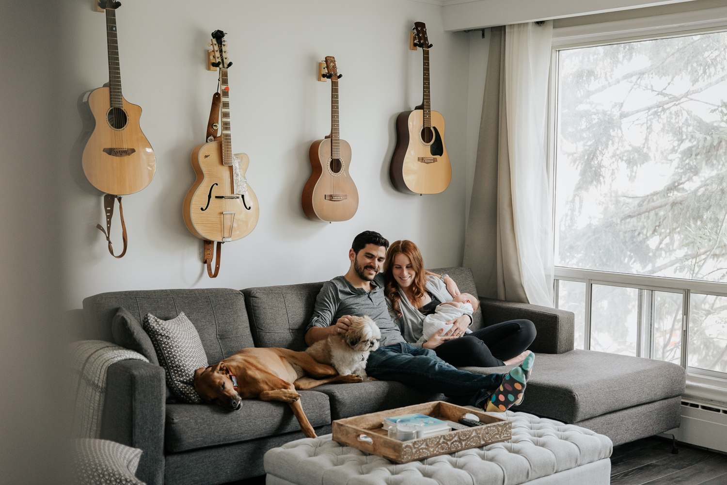 new parents sitting on living room couch, mom holding 2 week old baby boy, large and small dog lying on couch next to father, mother smiling at them - York Region In-Home Photography