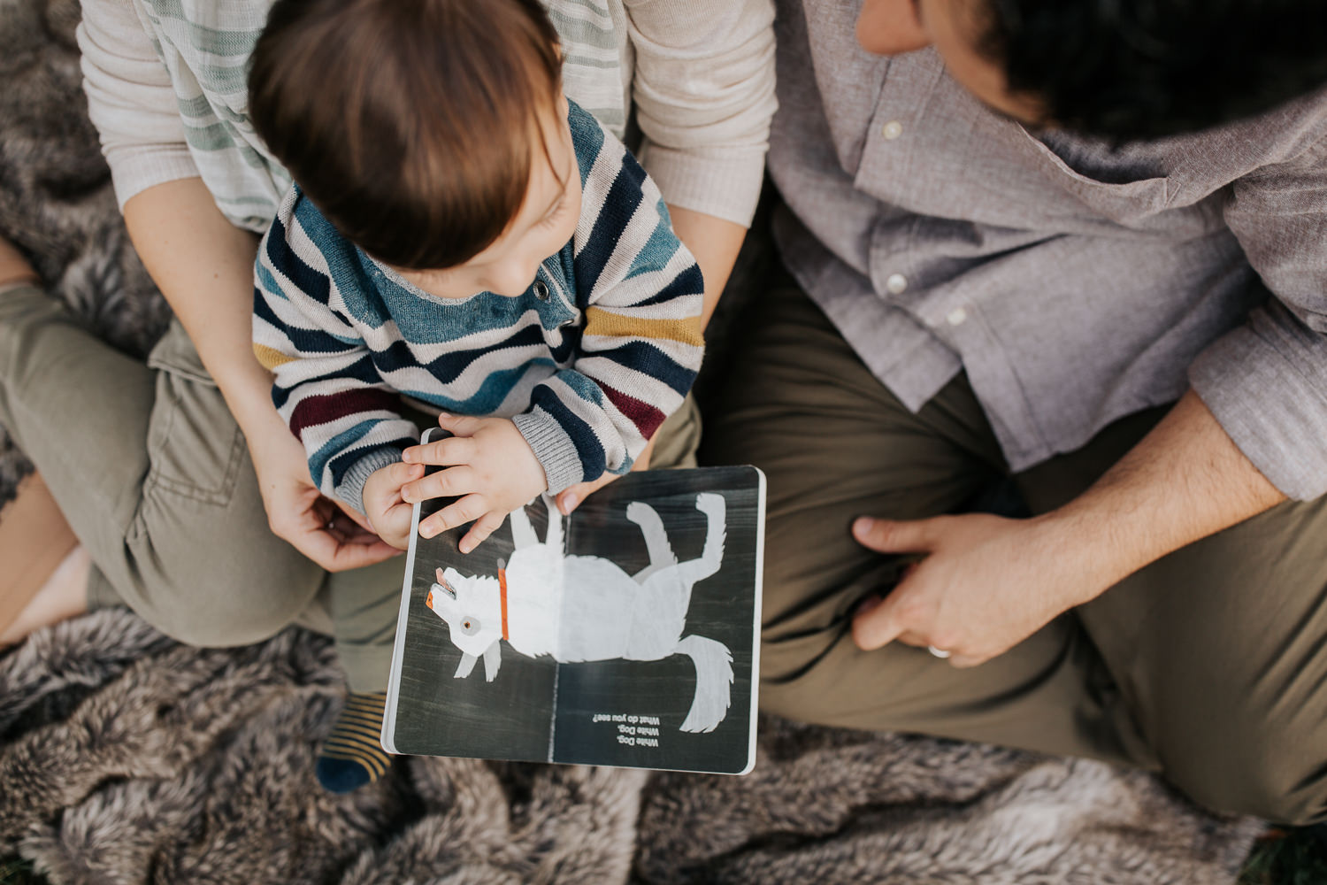 family of 3 sitting on fur blanket under willow tree at sunset, 1 year old baby boy sitting on mom's lap reading story, dad next to them - York Region Lifestyle Photography