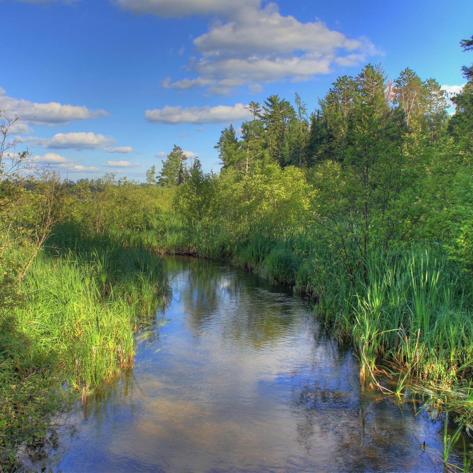 minnesota-lake-itasca-state-park-the-infant-mississippi.jpg