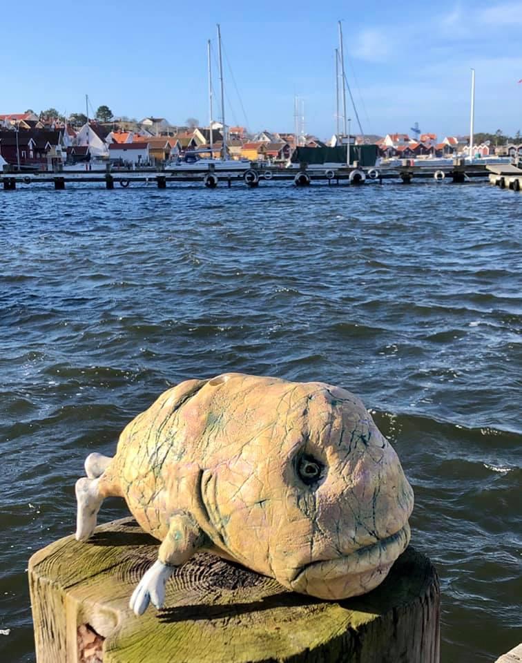 - ..og her i Fjällbacka møtte jeg Ulke Tangen, som tok seg en tur opp av vannet for å sole seg. Fin morgen. Han ba meg hilse til slektninger i Ballangen.