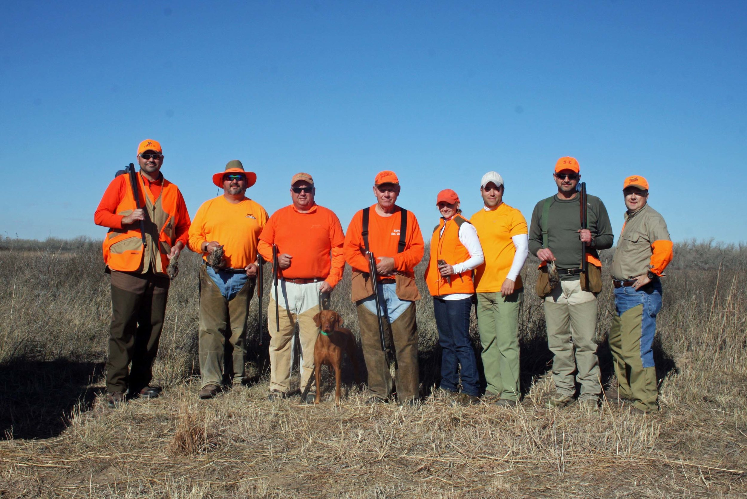 Lone Star quail/pheasant forever optima wma in ok december 2015