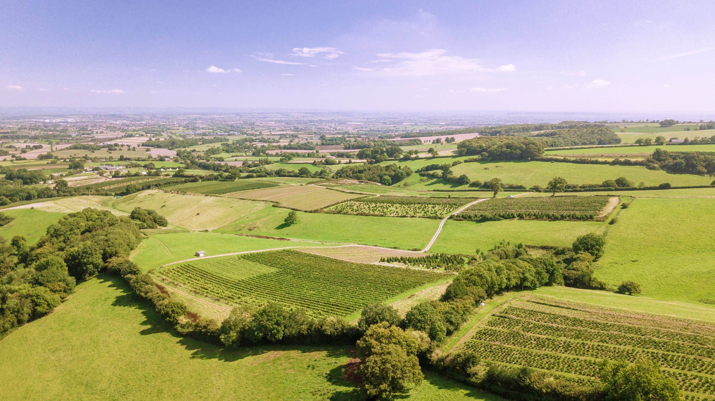 view from the top of the farm (1).jpg