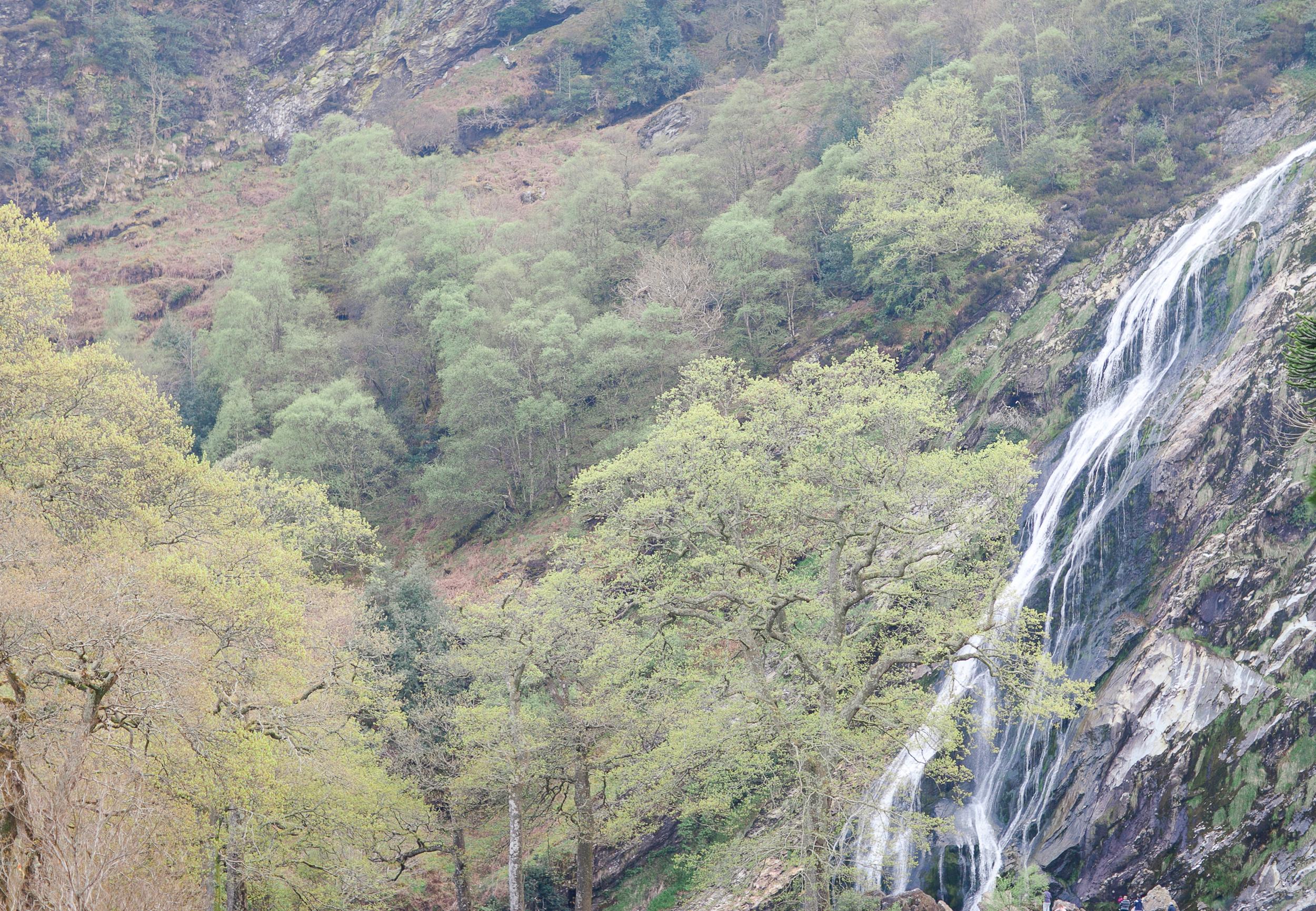Powerscourt Waterfall Enniskerry photos